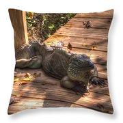 Large Iguana Throw Pillow by Dan Friend