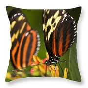 Large Tiger Butterflies Throw Pillow by Elena Elisseeva