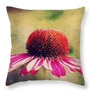 Last Summer Feeling Throw Pillow by Angela Doelling AD DESIGN Photo and PhotoArt