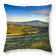 Late Spring Time View Throw Pillow by Robert Bales