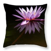 Lavendar Reflections Throw Pillow by Sabrina L Ryan