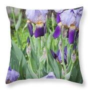 Lavender Iris Group Throw Pillow by Teresa Mucha