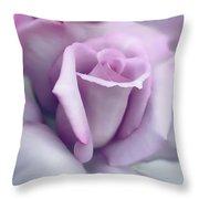 Lavender Rose Flower Portrait Throw Pillow by Jennie Marie Schell