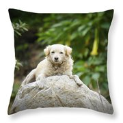 Lazy Dog Throw Pillow by Aged Pixel
