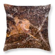 Leaf in Ice Throw Pillow by Anne Gilbert