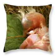 Leaf Pillow Throw Pillow by Shane Holsclaw