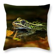 Leopard Frog Floating On Autumn Leaves Throw Pillow by Inspired Nature Photography Fine Art Photography