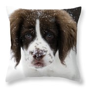 Lets Play Throw Pillow by Mike  Dawson