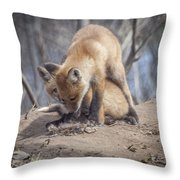 Lets Play Throw Pillow by Thomas Young
