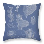 Leveillea Jungermannioides Throw Pillow by Aged Pixel