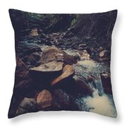Life Flows On Throw Pillow by Laurie Search