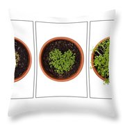 Life Of Cress On White Throw Pillow by Anne Gilbert