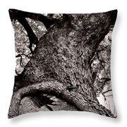 Lightning Tree  Throw Pillow by Trish Mistric