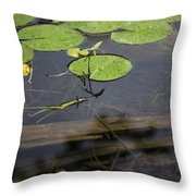 Lilly Pad Throw Pillow by John McGraw