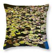 Lilly Pads Throw Pillow by David Pyatt