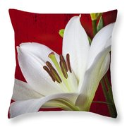 Lily against red wall Throw Pillow by Garry Gay