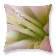 Lily And Raindrops Throw Pillow by Melanie Viola