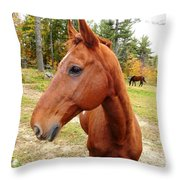 Limerick Throw Pillow by Mike Breau