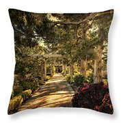 Linnaeus Teaching Garden Throw Pillow by Tamyra Ayles