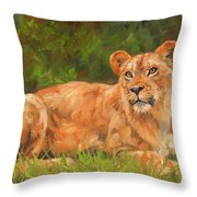 Lioness Throw Pillow by David Stribbling