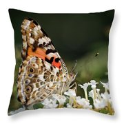 Little Creature Throw Pillow by Juergen Roth