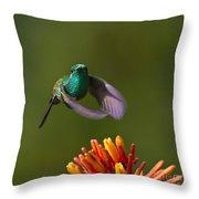 Little Hedgehopper Throw Pillow by Heiko Koehrer-Wagner