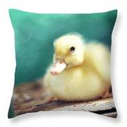 Little Miss Sunshine Throw Pillow by Amy Tyler