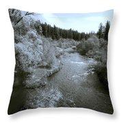 Little Spokane River Beauty Throw Pillow by Daniel Hagerman