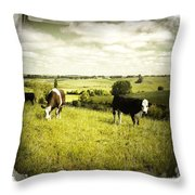 Livestock  Throw Pillow by Les Cunliffe