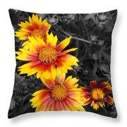 Living Color Throw Pillow by Diane E Berry
