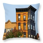 Living In Chicago Lincoln Park Throw Pillow by Christine Till
