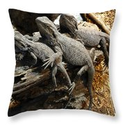Lizards Throw Pillow by Les Cunliffe