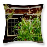 Log Cabin Window Throw Pillow by Gail Matthews