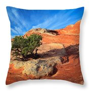 Lone Juniper Throw Pillow by Inge Johnsson