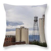 Longmont Sugar Mill Throw Pillow by Aaron Spong