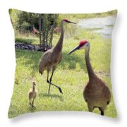 Looking For A Handout Throw Pillow by Carol Groenen