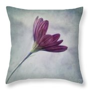 looking for you Throw Pillow by Priska Wettstein