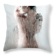 Looking Through The Glass 2 Throw Pillow by Jt PhotoDesign