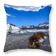 Looking Up The Salmon River Throw Pillow by Robert Bales