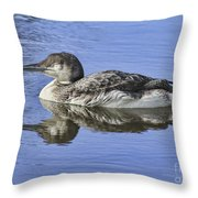 Loon On Vacation Throw Pillow by Deborah Benoit