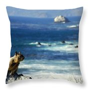 Lost At Sea Throw Pillow by Karen Wiles