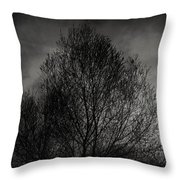 Lost In Moments Throw Pillow by Taylan Soyturk
