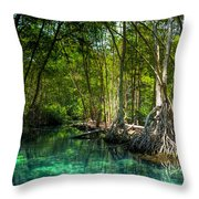 Lost Lagoon On The Yucatan Coast Throw Pillow by Mark E Tisdale