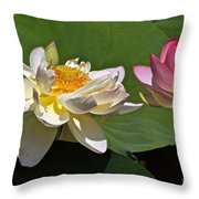 Lotus Pink -- Lotus White And Gold Throw Pillow by Byron Varvarigos