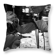 Lotuses In The Pond I. Black And White Throw Pillow by Jenny Rainbow