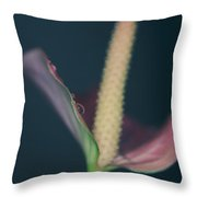 Lovely Things Throw Pillow by Laurie Search