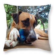 Lucky Throw Pillow by Dubi Roman