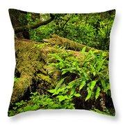 Lush Temperate Rainforest Throw Pillow by Elena Elisseeva