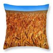 Lying In The Rye Throw Pillow by Karen Wiles