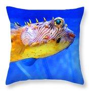 Magic Puffer - Fish Art By Sharon Cummings Throw Pillow by Sharon Cummings